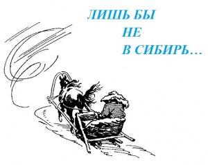 не в Сибирь